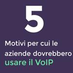 INFOGRAFICA: 5+1 motivi per cui le aziende dovrebbero optare per il VoIP