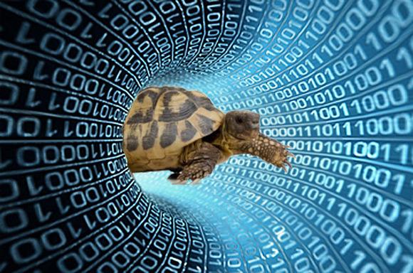 slow_internet_olimontel